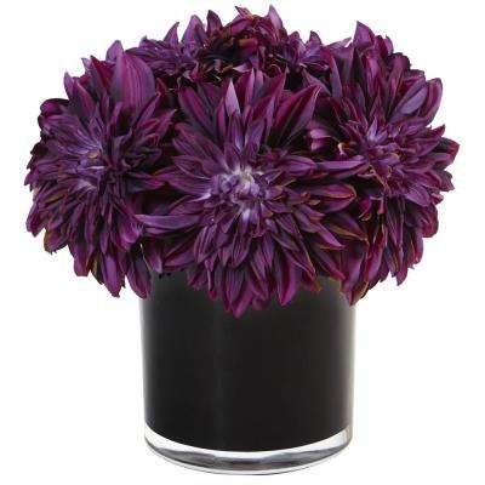 Dahlia Mum Silk Arrangement in Black Glossy Cylinder Vase Purple