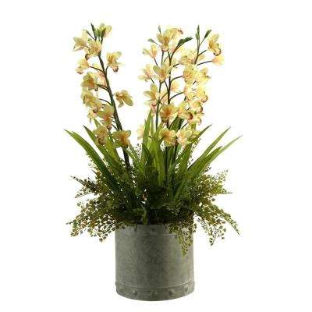 Indoor Light Yellow Orchids in Round Metal Planter