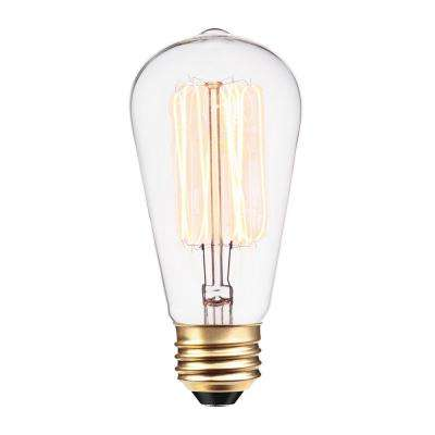 60 Watt Incandescent S60 Vintage Squirrel Cage Medium Base Light Bulb