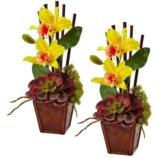14.75 in. Cattleya Orchid and Succulent Arrangement in Yellow (Set of 2)