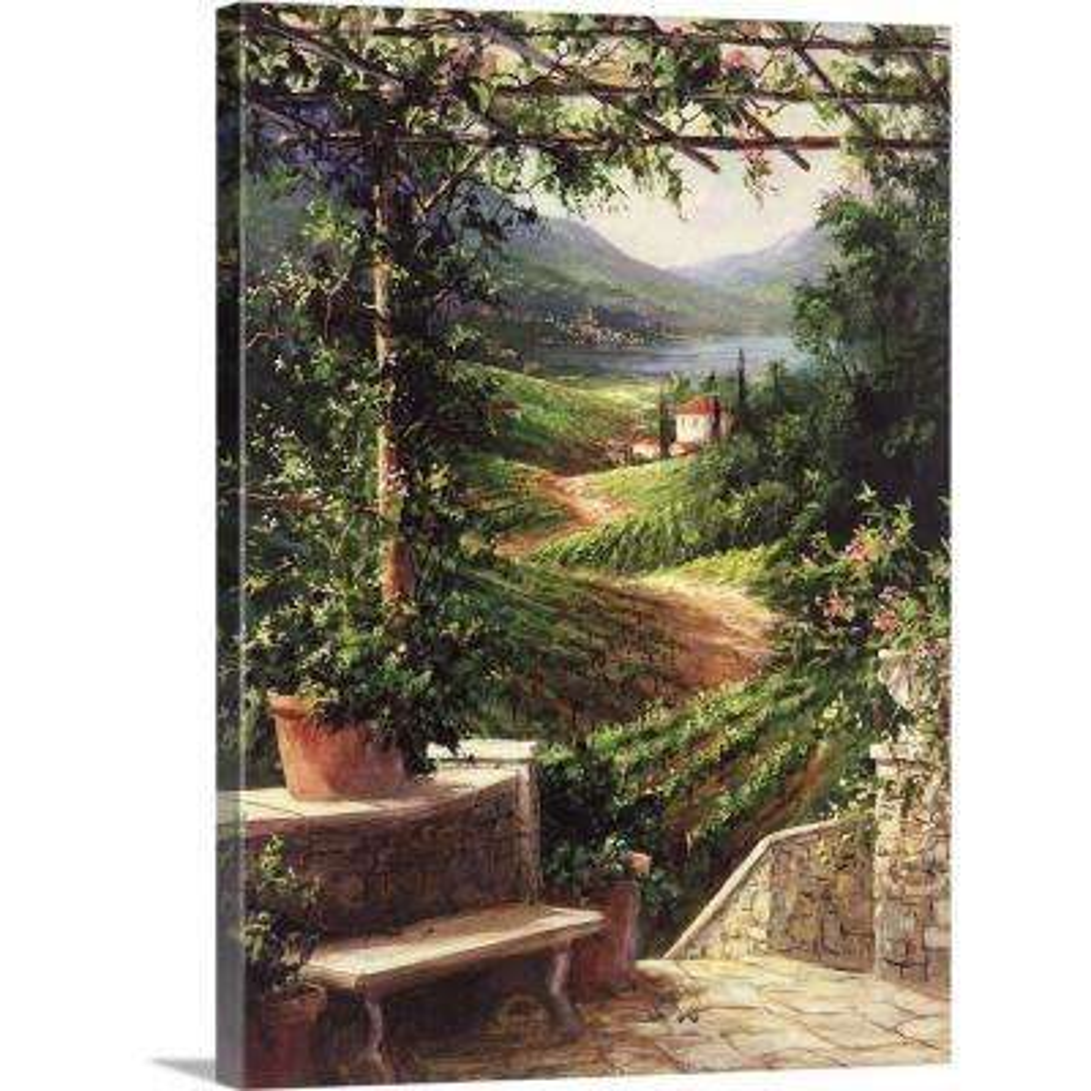 """Chianti Vineyard"" by Art Fronckowiak Canvas Wall Art"