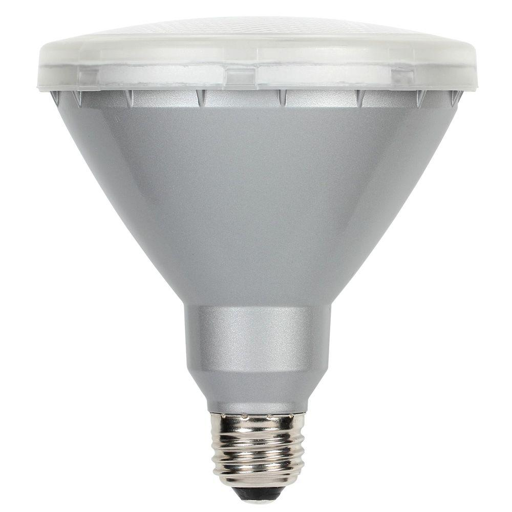 Outdoor led bulbs light bulbs the home depot 90w equivalent warm white par38 led flood outdoor wet location light bulb aloadofball Image collections