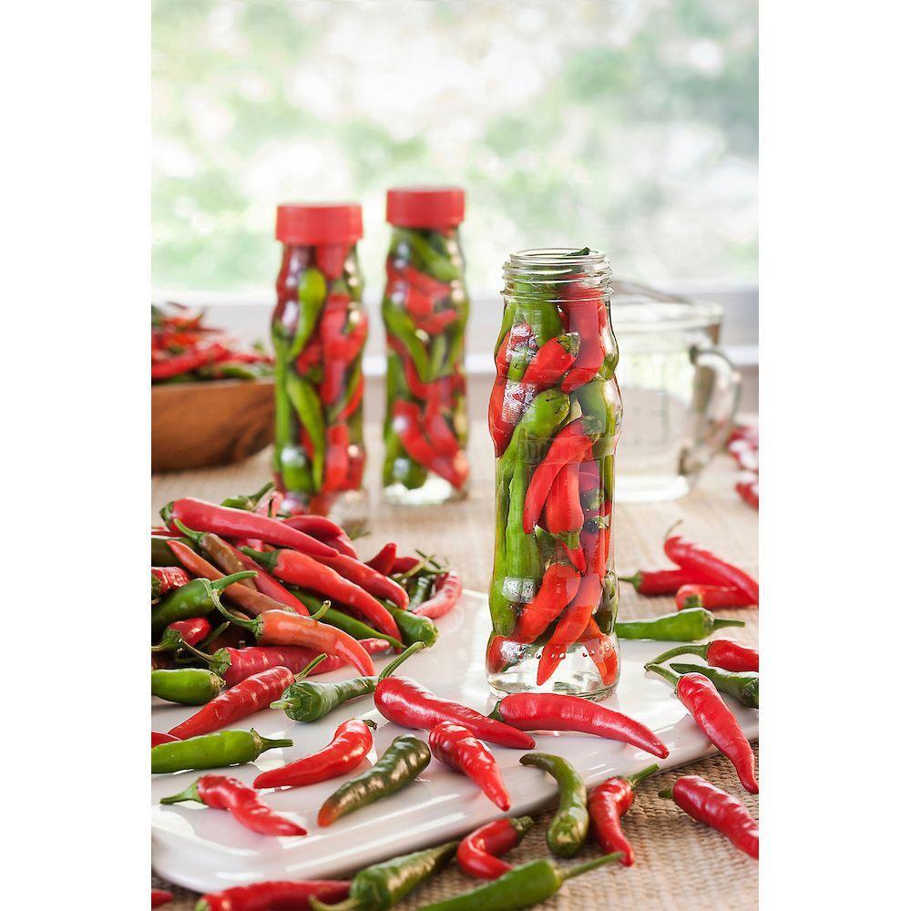 Bonnie Plants 4.5 in. Dragon Hot Cayenne Pepper
