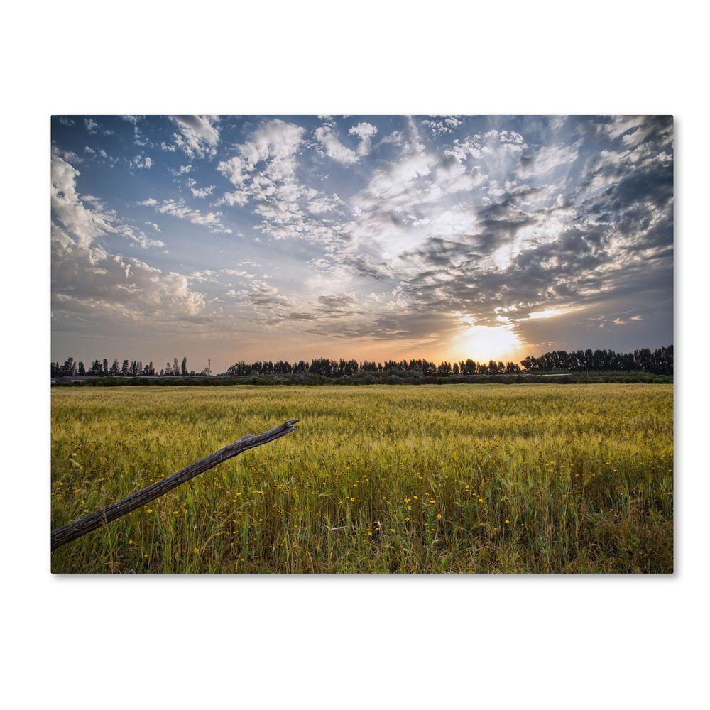 Trademark Fine Art 22 in. x 32 in. End of Day Canvas Art