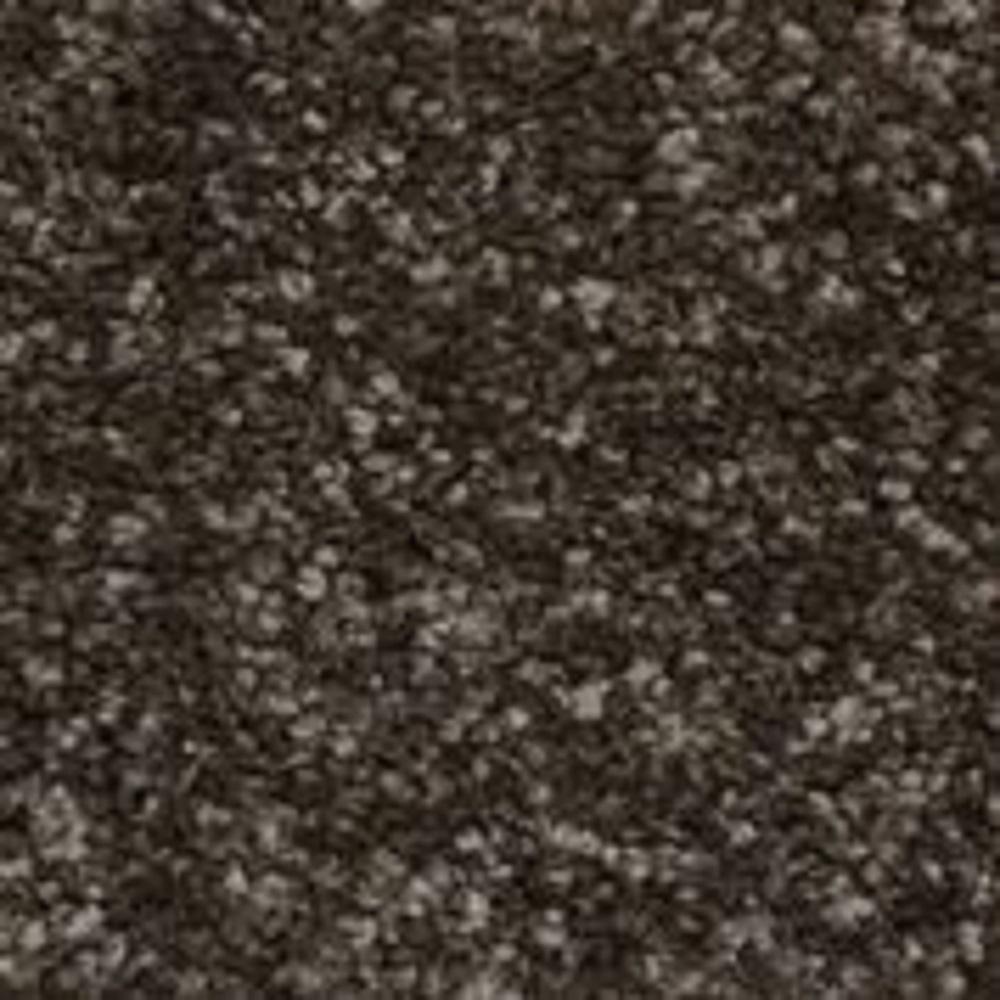 Color Sample - Sycamore II - Color Ebony Texture 8 in. x 8 in.