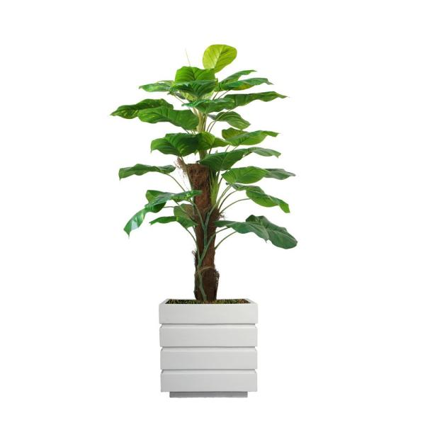 Laura Ashley 54 in. Real touch greenery in Fiberstone Planter VHX144211