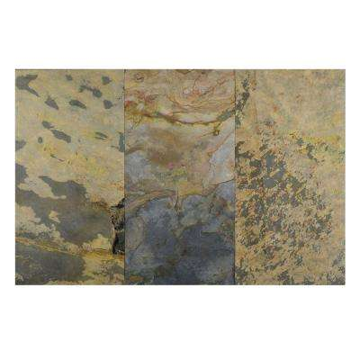 Indian Autumn 12 in. x 24 in. Slate Peel and Stick Wall Tile (6 sq. ft. / pack)