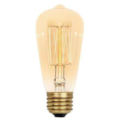 40-Watt ST15 Timeless Vintage Inspired Incandescent Light Bulb
