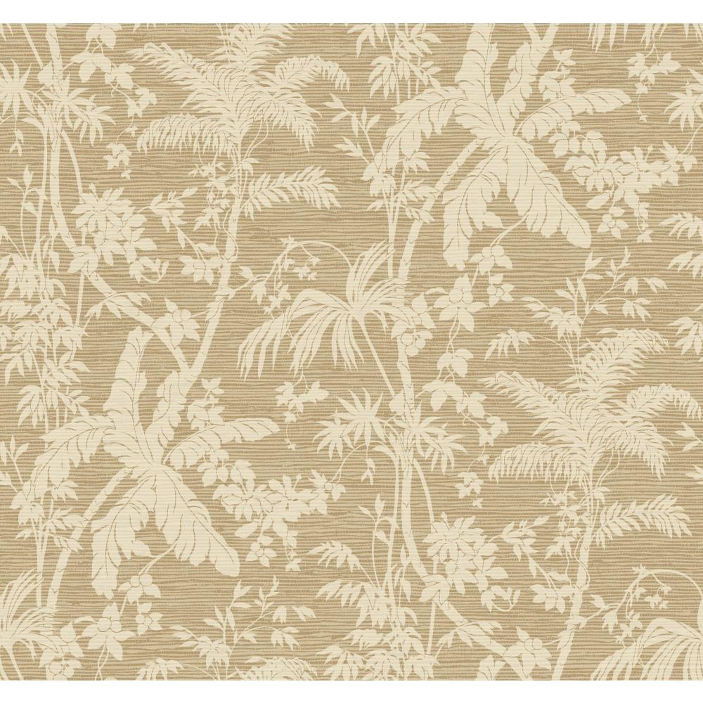York Wallcoverings Tropics Palm Shadow Wallpaper At7108