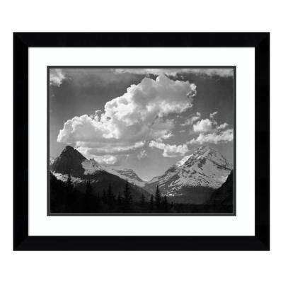 """""""Trees in Glacier National Park, Montana - National Parks and Monuments, 1941"""" by Ansel Adams Framed Wall Art"""