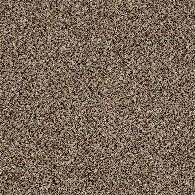 Carpet Sample - Wholehearted I - Color Pebble Path Twist 8 in. x 8 in.