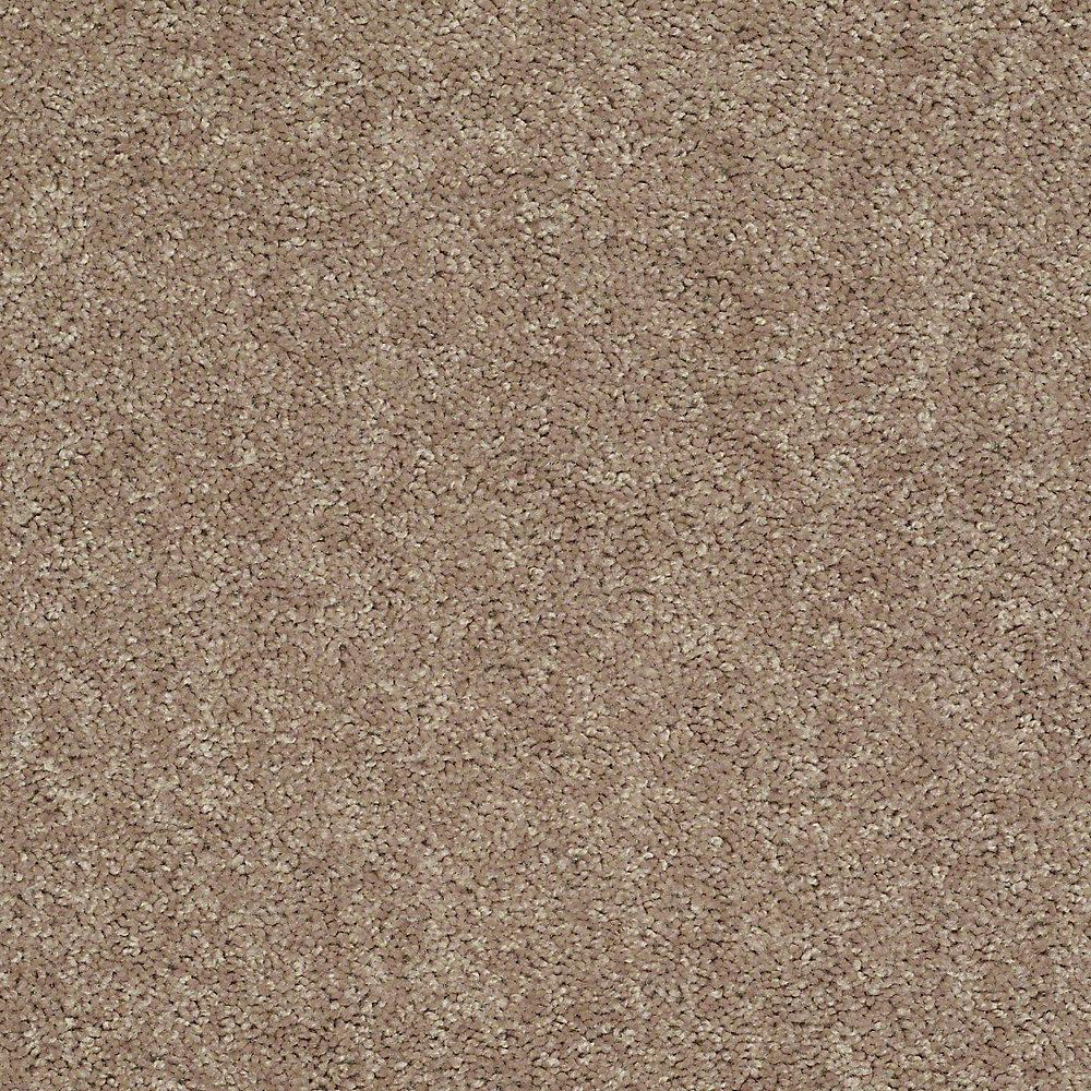 Trafficmaster Alpine Color Natural Texture 15 Ft Carpet