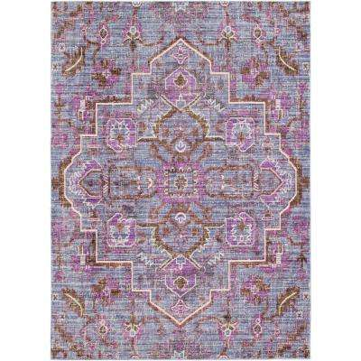 2 X 3 Purple Area Rugs Rugs The Home Depot