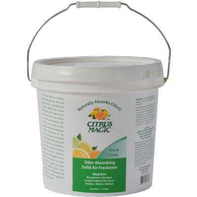 2 Gal. Odor-Absorbing Citrus Solid Air Freshener