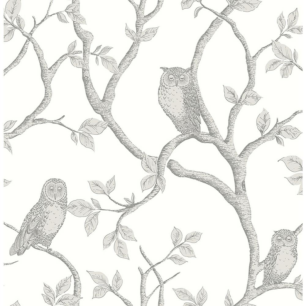 Brewster Enchanted Forest Grey Owl and Tree Wallpaper