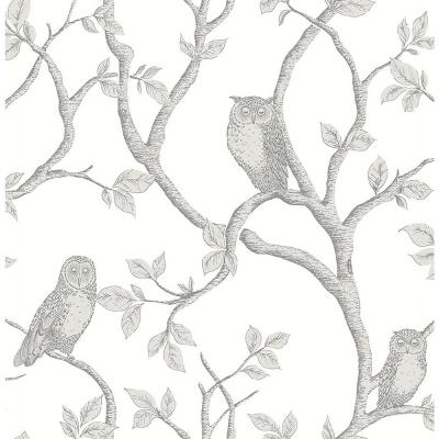 Enchanted Forest Grey Owl and Tree Wallpaper