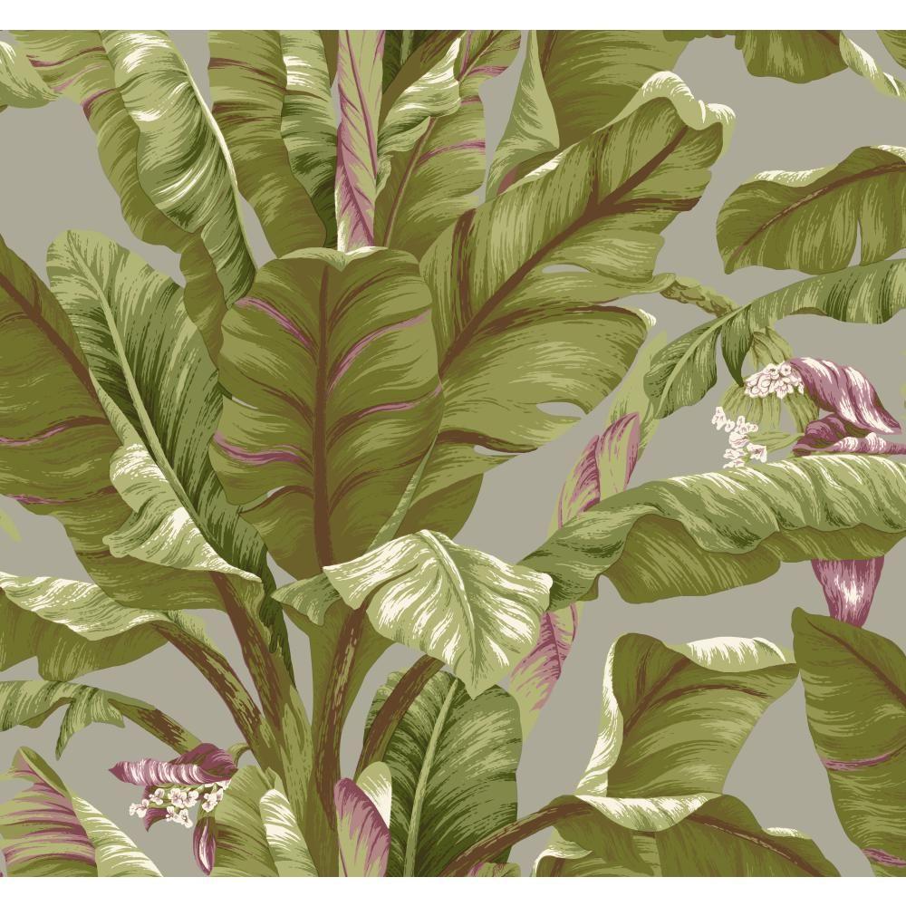York Wallcoverings Tropics Banana Leaf Wallpaper-AT7069 ...