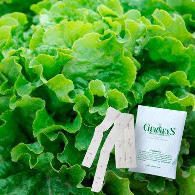Lettuce Leaf Green Ice 15 ft. Seed Tape
