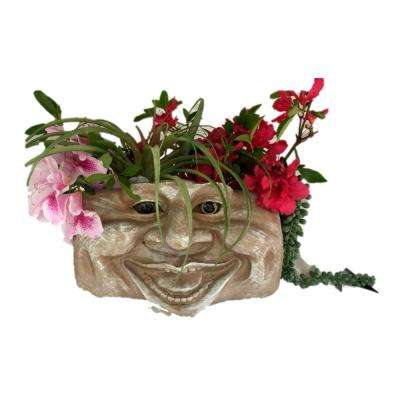 Aunt Minnie Stone Wash 10.5 in. Muggly Face Statue Tree and Patio Resin Wall Planter