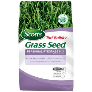 3 lbs. Turf Builder Perennial Ryegrass Mix Seed