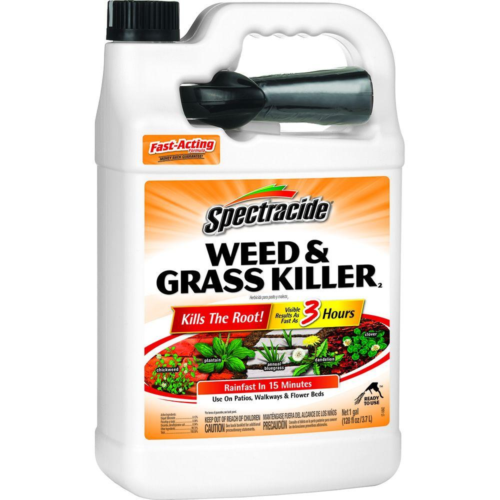 Spectracide Weed And Grass Killer 128 Oz Ready To Use Sprayer Hg 96017 3 The Home Depot