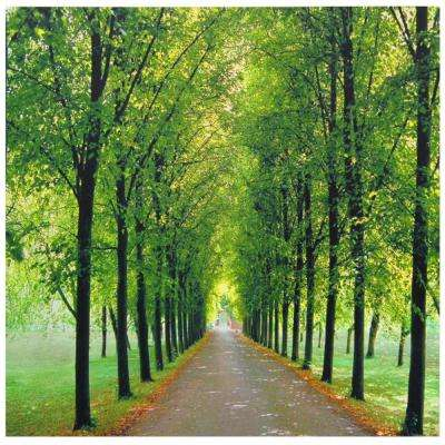 "19.75 in. x 19.75 in. ""Path of Life"" Canvas Wall Art"