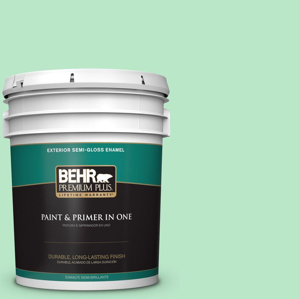 5-gal. #460A-3 Canton Jade Semi-Gloss Enamel Exterior Paint