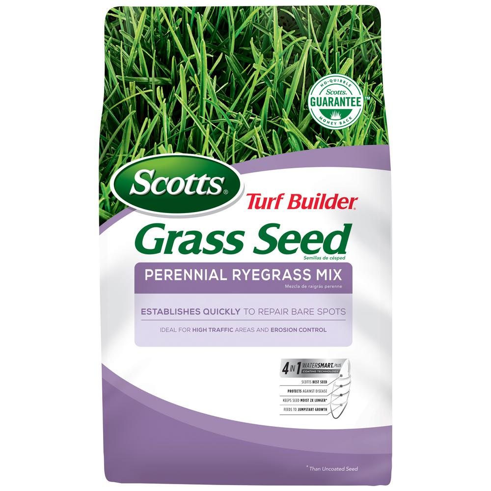 Enjoyable Scotts 7 Lb Turf Builder Perennial Ryegrass Mix Seed Home Interior And Landscaping Dextoversignezvosmurscom