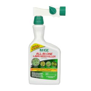 IMAGE 32 oz  Southern Lawn Weed Killer Ready-To-Spray