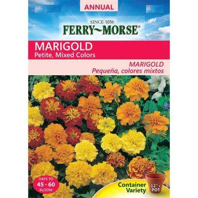 Marigold Petite Mixed Colors Seed