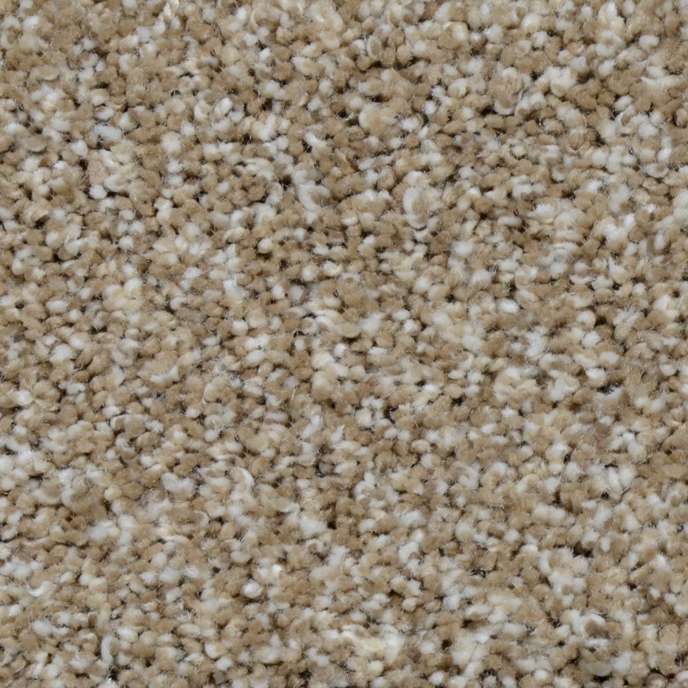 Home Decorators Collection Carpet Sample Trendy Threads Ii Color Kensington Texture 8 In X
