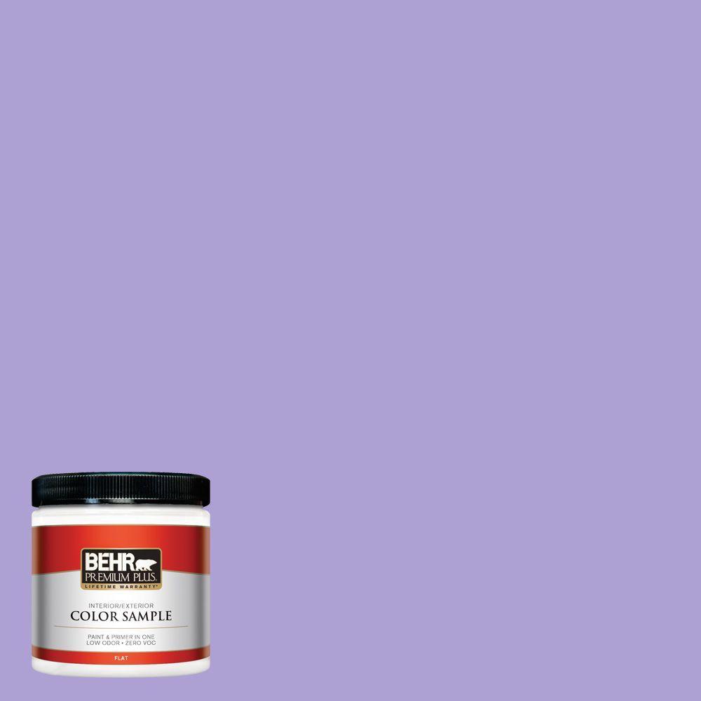 8 oz. #P560-4 Magic Wand Interior/Exterior Paint Sample