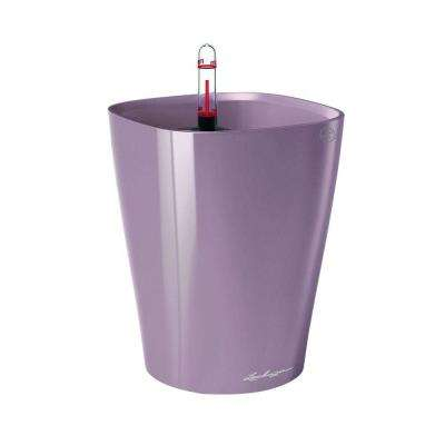 Deltini Premium 6 in. Square Pastel Violet Table Top Self Watering Plastic Planter