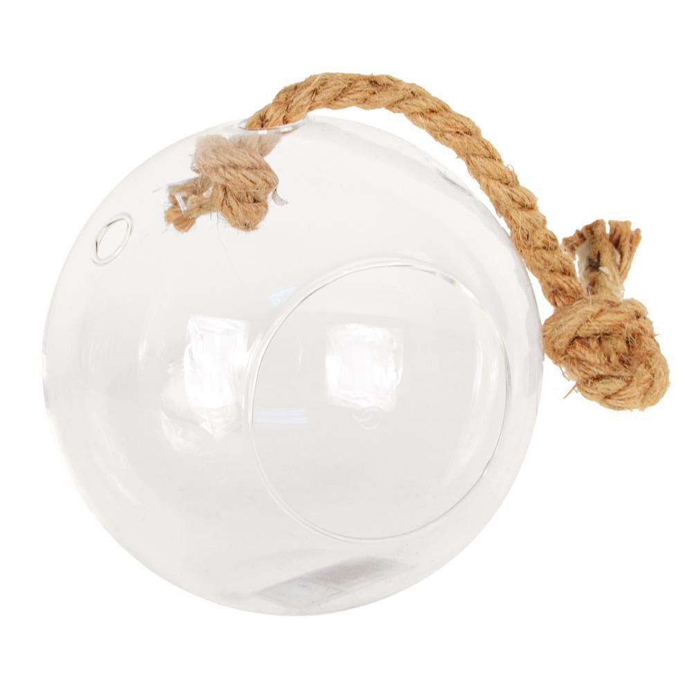 Arcadia Garden Products Sphere 5 in x 5 in Glass Hanging Terrarium