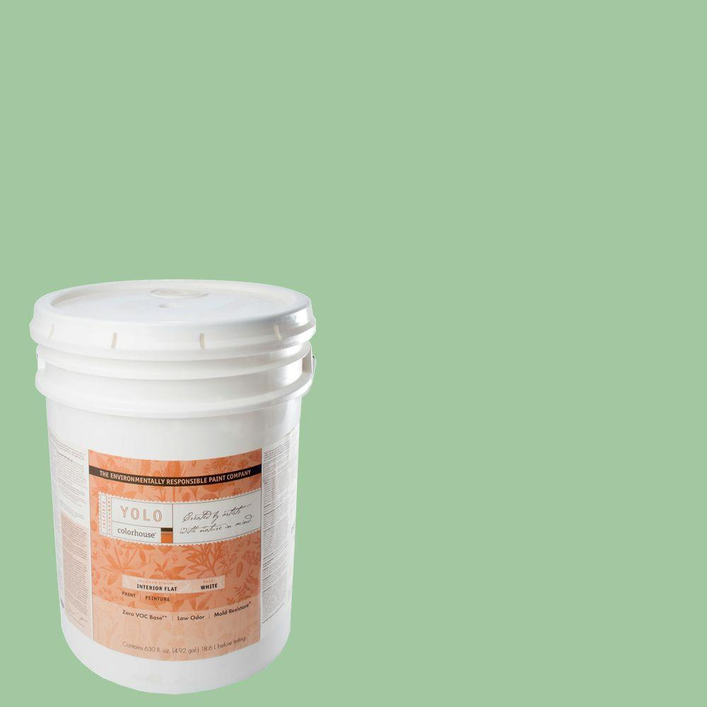 YOLO Colorhouse 5-gal. Thrive .04 Flat Interior Paint-DISCONTINUED
