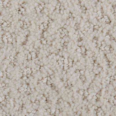 Carpet Sample - Hopeful Wishes - Color Halo Pattern 8 in. x 8 in.