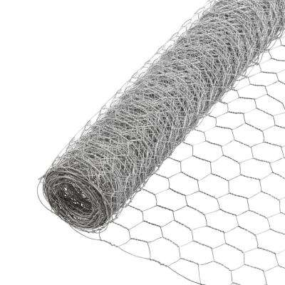 1 in. x 4 ft. x 50 ft. 20-Gauge Galvanized Poultry Netting