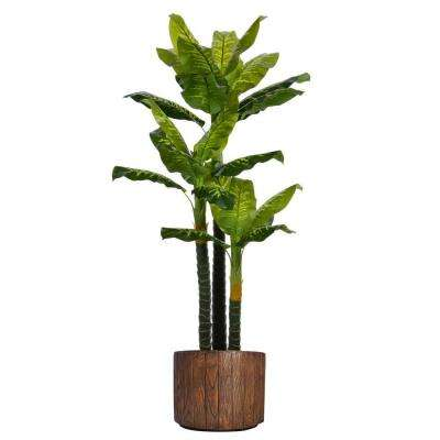 77 in. Tall Real Touch Evergreen in Planter