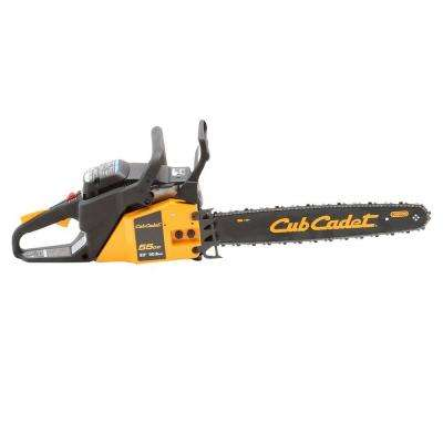20 in. 55cc 2-Cycle Gas Chainsaw with Carry Case