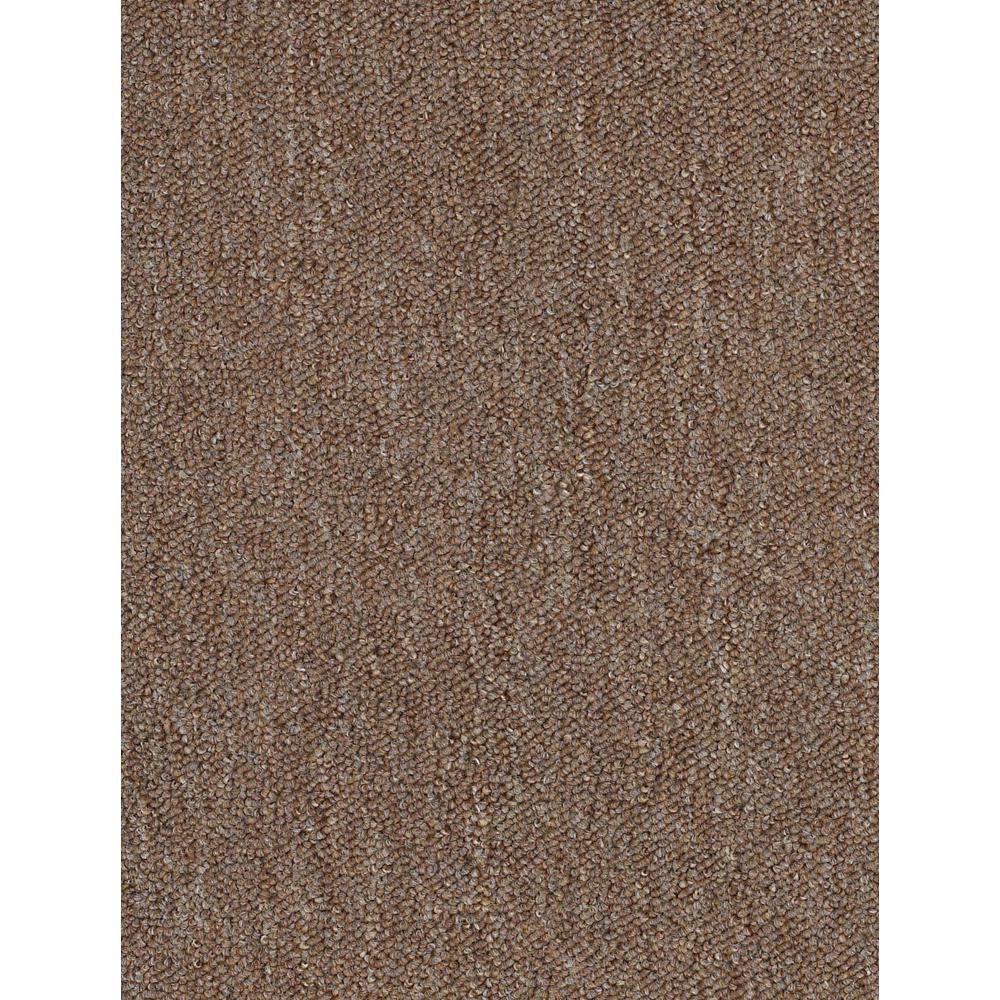 Carpet Sample - Viking - Color Buckwheat Loop 8 in. x 8 in.