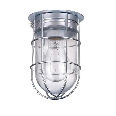 All Weather 1-Light Pewter Outdoor Ceiling Mount with Clear Glass