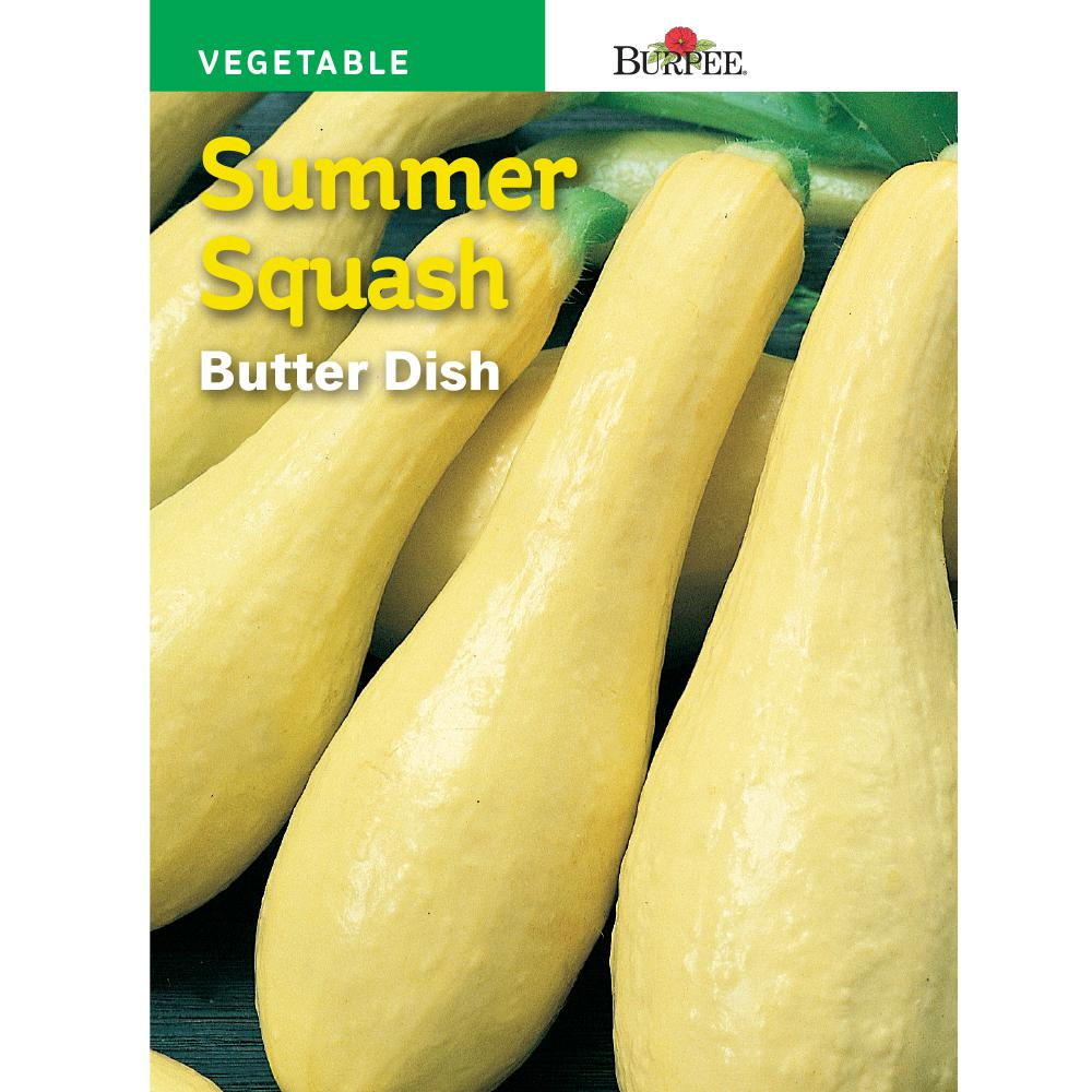 Burpee Squash Summer Squash Butter Dish 66172 The Home Depot