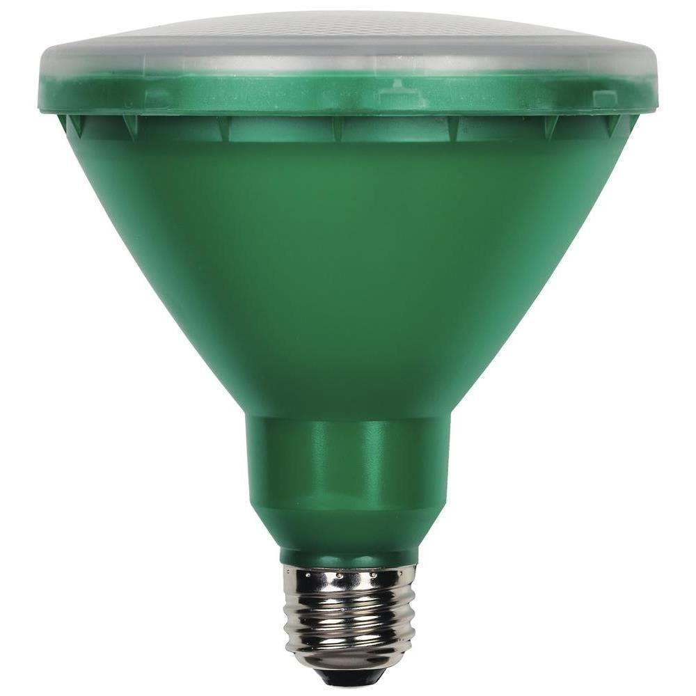 100W Equivalent Green PAR38 Flood LED Indoor/Outdoor Light Bulb