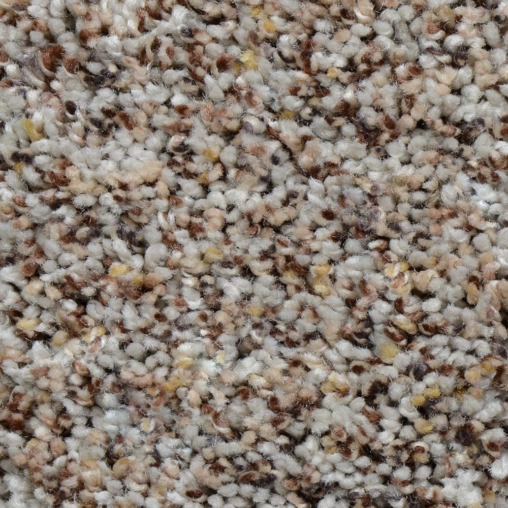 Carpet Sample - Powder Springs III - Color Baldwyn Twist 8 in. x 8 in.