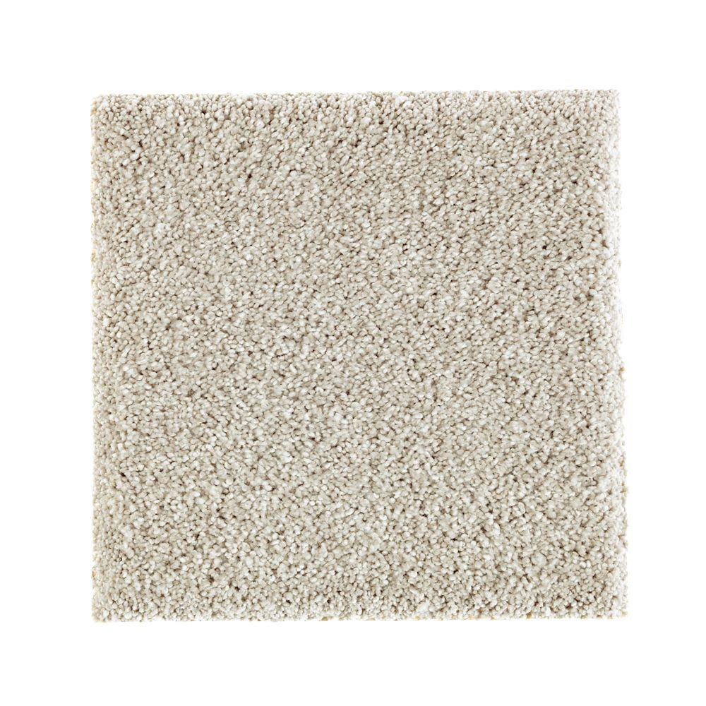 PetProof Carpet Sample - Whirlwind II - Color Old Bridge Texture 8 ...