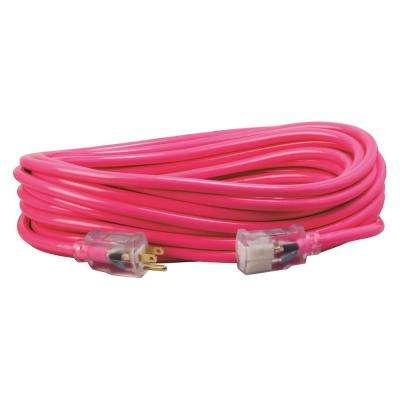 25 ft. 12/3 SJTW Hi-Visibility Outdoor Heavy-Duty Extension Cord with Power Light Plug