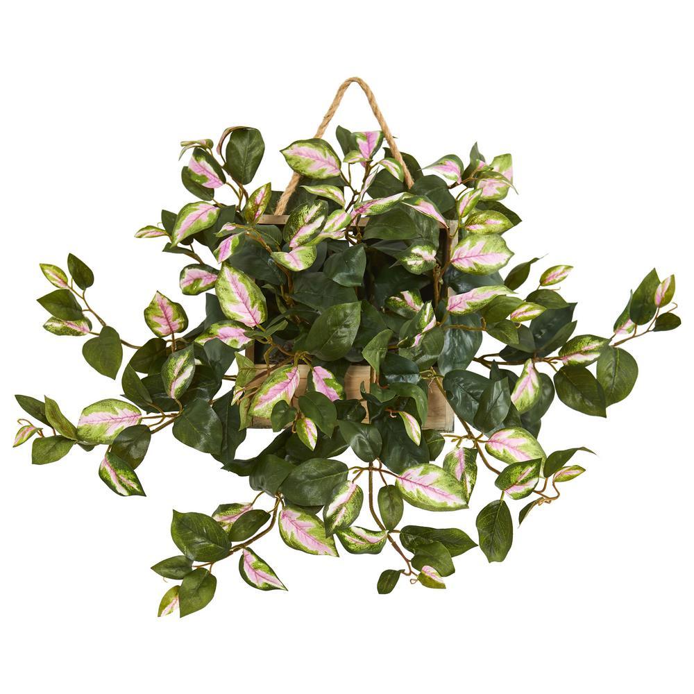 24 in. Indoor Hoya Artificial Plant in Decorative Hanging Frame