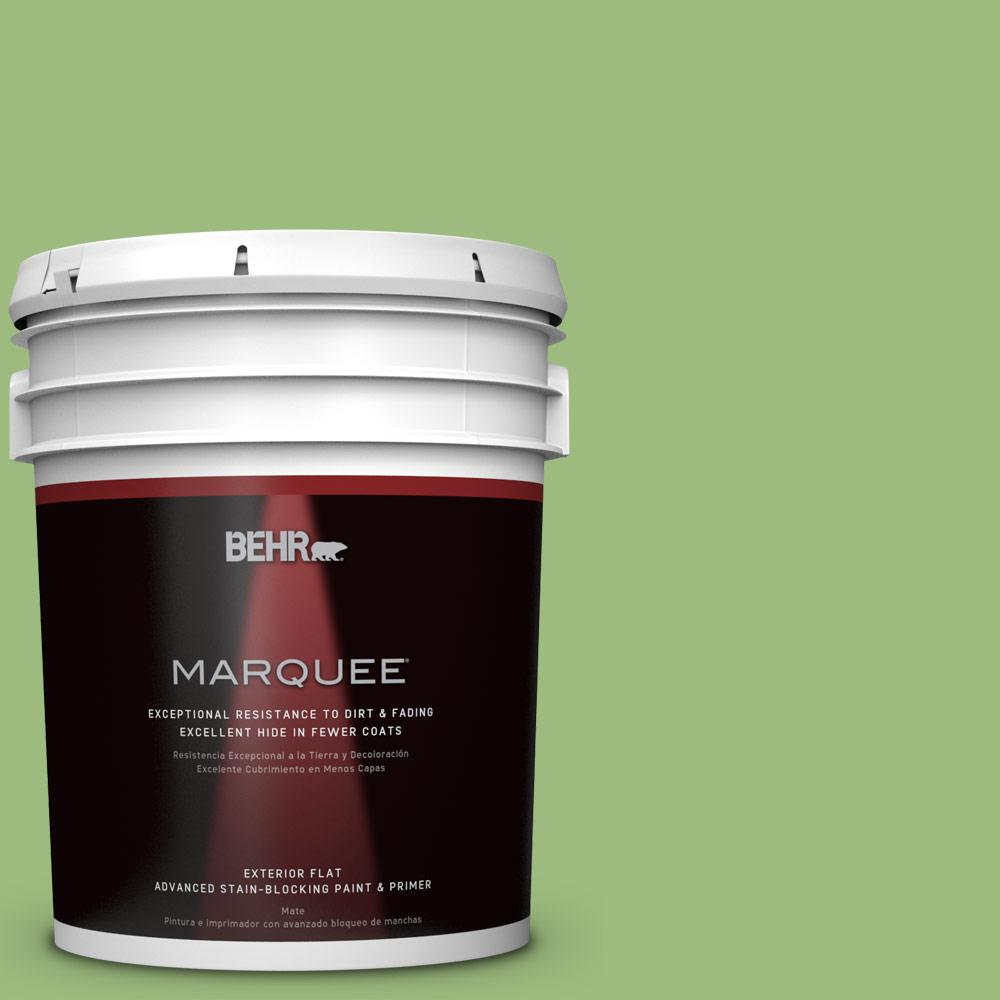 BEHR MARQUEE 5-gal. #P380-5 Gleeful Flat Exterior Paint