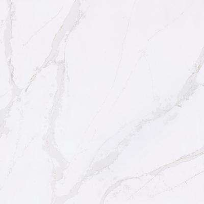 4 in. x 8 in. Quartz Countertop Sample in Calacatta Gold