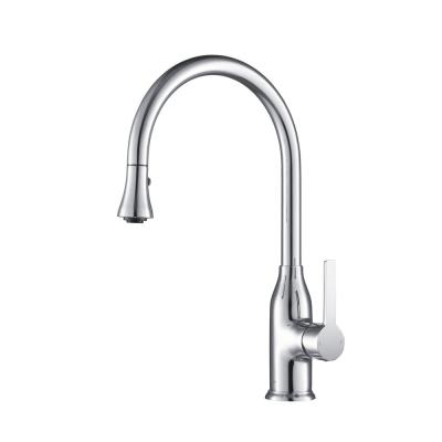 Everton Gooseneck 1.8 GPM CalGreen Single-Handle Pull-out Sprayer Kitchen Faucet in Chrome